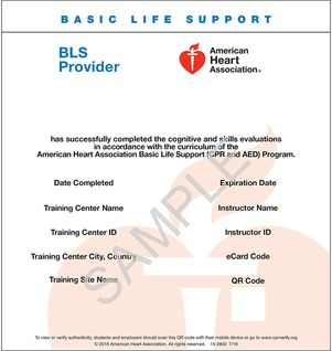 bls basic support card provider ecard healthcare aha acls blended heart association american certification class template learning ecards cpr session